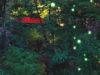 都会の真ん中でも幻想的な世界に浸る。ホテル椿山荘東京の「ほたるの夕べ」